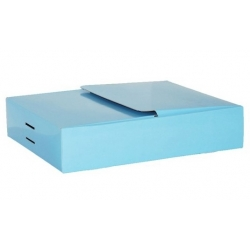 Medium One Piece Wing Box BW2P380