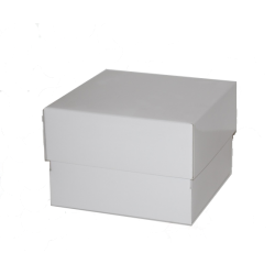 Medium Tall Cake Box